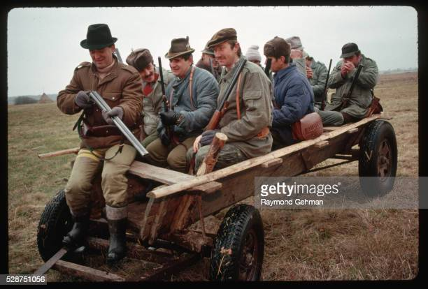 hunters in cart - bialowieza forest stock pictures, royalty-free photos & images