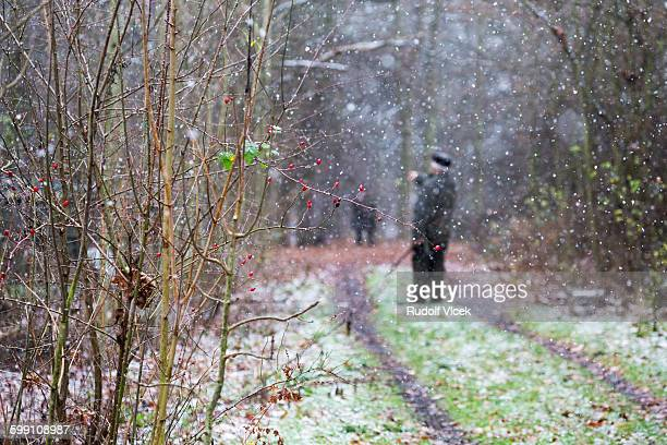 Hunters in forest, snowing, rosehips