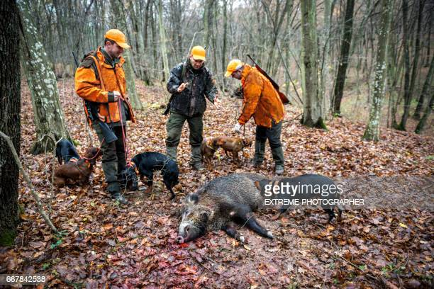 hunters in the forest - dead dog stock pictures, royalty-free photos & images