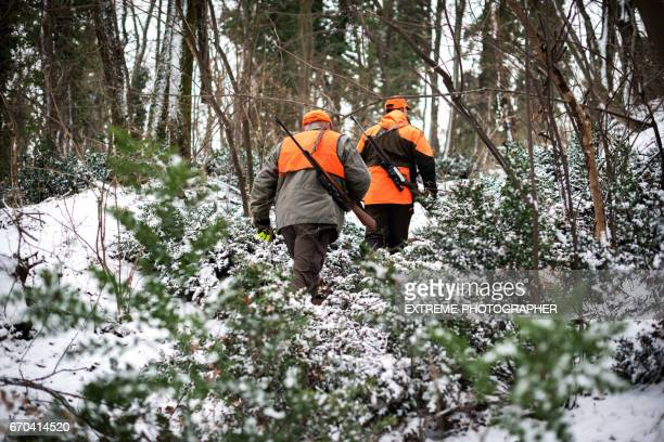 hunters in the woods - animals hunting stock pictures, royalty-free photos & images