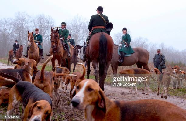 Hunters ride horses on February 16 2013 during a hound hunt in the Amboise forest in the central French Loire region AFP PHOTO/ ALAIN JOCARD / AFP...