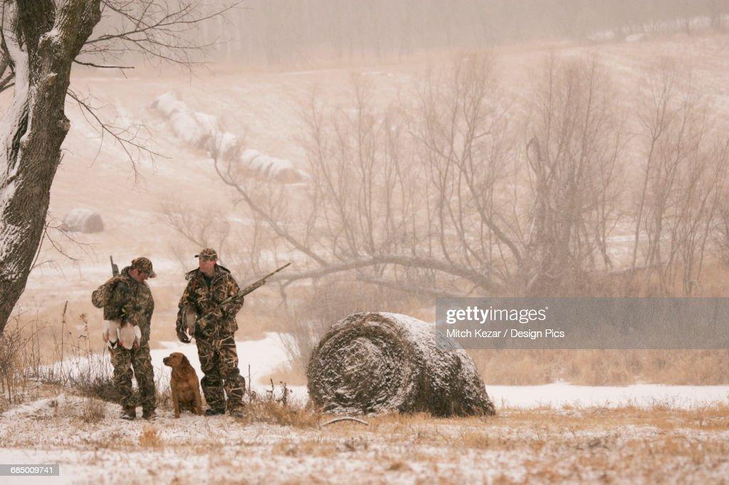 Hunters waterfowl hunting Near Hay Bales in Winter : Stock Photo