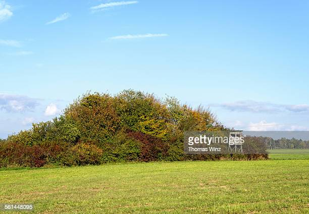 Hunting blind next to a field