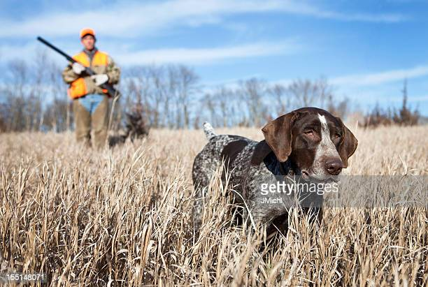 Hunting dog and man bird hunting