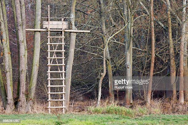 hunting high seat with a ladder - czech hunters stock pictures, royalty-free photos & images