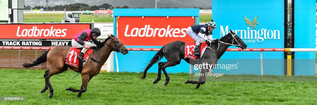 Hunting Hill ridden by Ben Melham wins thebigscreencompany.com.au Handicap at Mornington Racecourse on September 13, 2017 in Mornington, Australia.