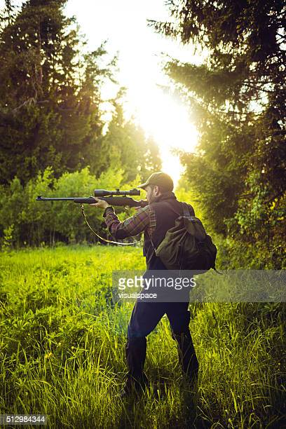 Hunting In The Meadow In The Forest