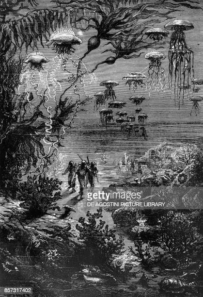 Hunting in underwater forests of Crespo illustration from Twenty Thousand Leagues Under the Sea by Jules Verne France 19th century