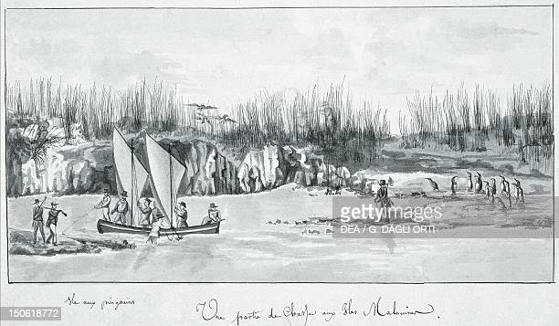 Hunting party on Penguin Island in the Falkland Islands, illustration taken from Viaggio di Duperrey, 1822. Argentina, 19th century.