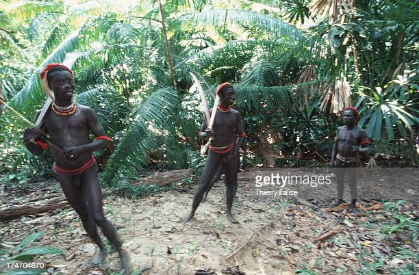 Hunting party When they are short of fish fruits roots or other food the Jarawas go hunting in small groups