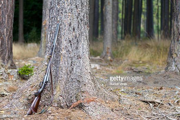 hunting rifle (gun) leaning on a tree in forest - czech hunters stock-fotos und bilder