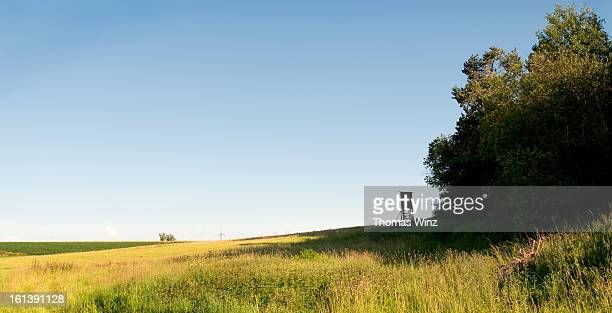 Hunting stand overlooking a field