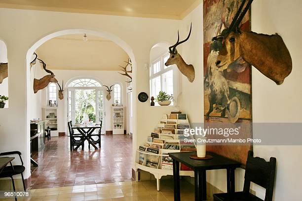 Hunting trophies hang on the walls of the livingroom of Ernest Hemingway�s house at the Finca Vigia on December 4 2006 in Havana Cuba The Hemingway...