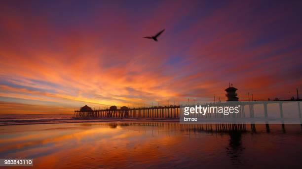 huntington beach pier - huntington beach stock pictures, royalty-free photos & images