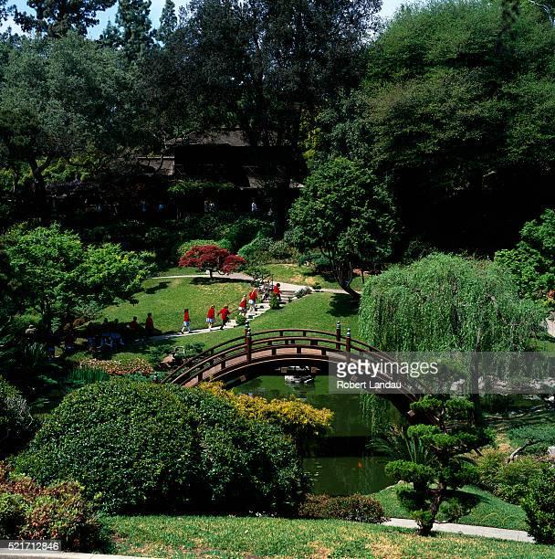 huntington botanical gardens in pasadena, california - pasadena stock pictures, royalty-free photos & images