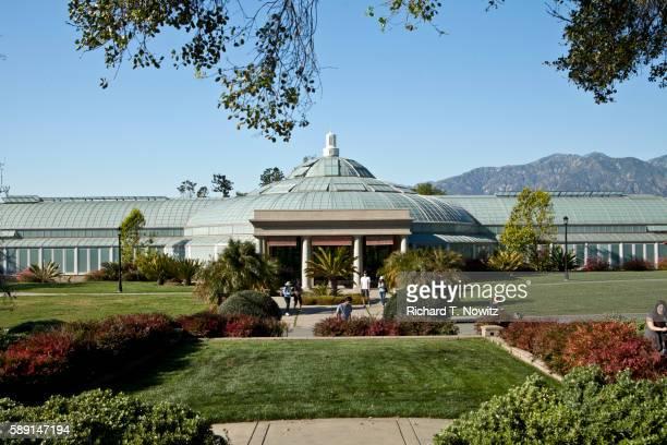 huntington garden & library - pasadena stock pictures, royalty-free photos & images
