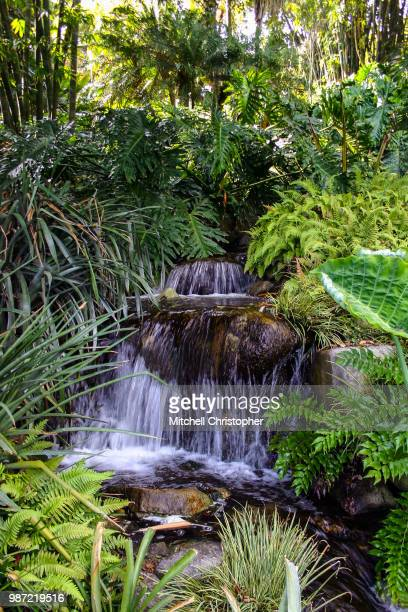 huntington waterfall - brook mitchell stock pictures, royalty-free photos & images