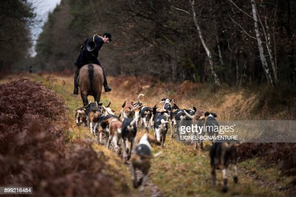 Huntsman Philippe Prioux from the 'Rallye Tempete' rides his horse during a hunting with hounds on December 23 2017 in the forest near Chatenoy...