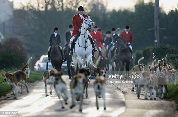 Huntsmen take part in the Belvoir Hunt on December 7 2004 in Grantham England Fox hunting will become illegal on February 18 the Countryside Alliance...