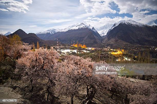 hunza valley, pakistan - hunza valley stock pictures, royalty-free photos & images
