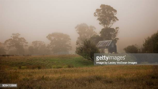Huonville Farm in the Morning Mist