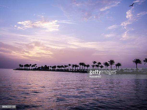 hurghada sunshine - hussein52 stock photos and pictures