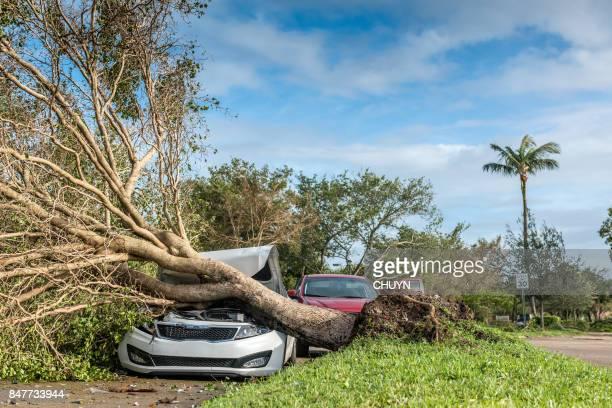 Hurricane accident