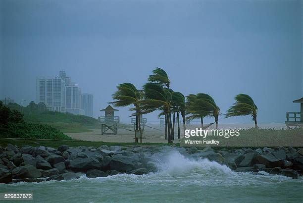 hurricane along coastline - orkaan stockfoto's en -beelden