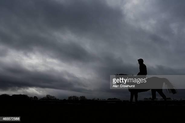 Hurricane Fly on the gallops at Cheltenham racecourse on March 08 2015 in Cheltenham England