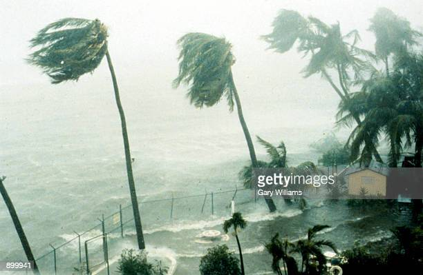 Hurricane Hugo in action as it hits St Croix Virgin Islands in 1989