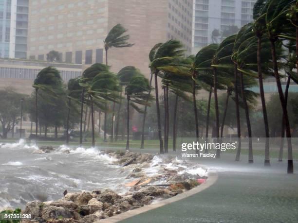 hurricane irma extreme image of storm striking miami, florida - orkaan irma 2017 stockfoto's en -beelden