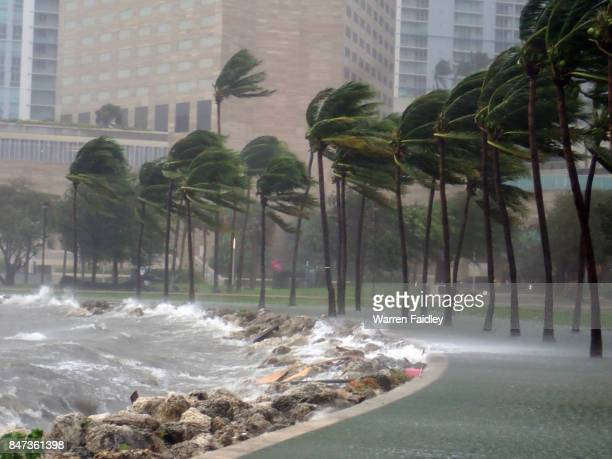 hurricane irma extreme image of storm striking miami, florida - gulf coast states stock pictures, royalty-free photos & images