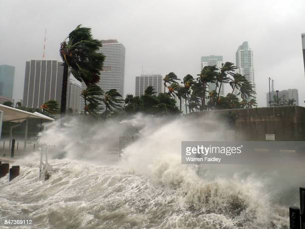hurricane irma extreme image of storm striking miami, florida - florida usa stock-fotos und bilder
