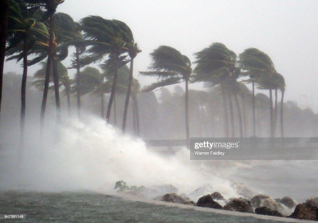 Hurricane Irma Strikes South Florida : Stock-Foto