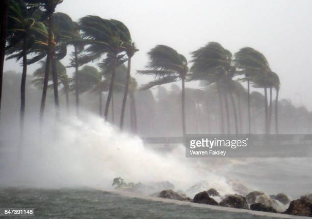 hurricane irma strikes south florida - orkaan stockfoto's en -beelden