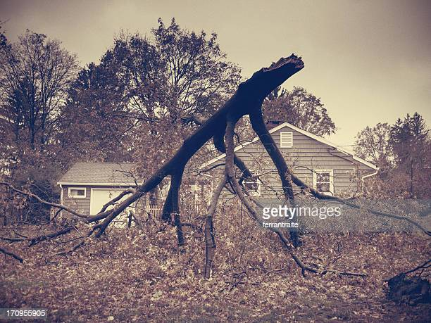hurricane sandy - ridgewood new jersey stock pictures, royalty-free photos & images