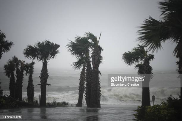 hurricane winds - storm stock pictures, royalty-free photos & images