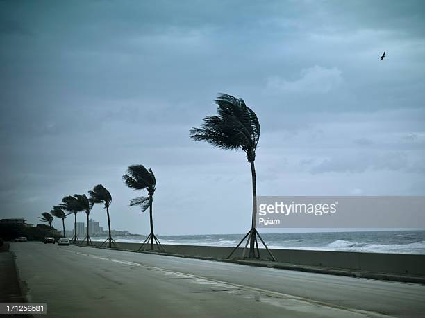 Hurricane winds pound the shore