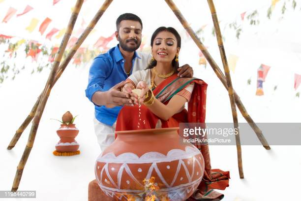 husband and  wife celebrating pongal - pongal festival stock pictures, royalty-free photos & images