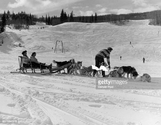 Huskies Haul Visitors Around Aspen A team of nine Alaska huskies raised and trained by Jim Prendergast of Aspen Colo are giving visitors and relaxing...