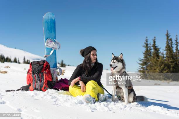 husky dog and owner enjoying the winter sun - silver shoe stock pictures, royalty-free photos & images
