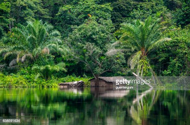 hut at the shoreline of congo river - democratic republic of the congo ストックフォトと画像