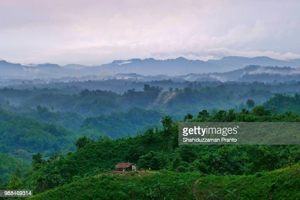 a hut in the hills on a foggy day. - bangladesh stock pictures, royalty-free photos & images