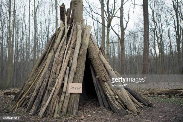 hut in the woods for rent - irony stockfoto's en -beelden