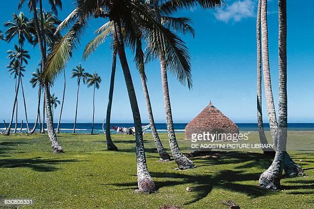 A hut Lifou Island Loyalty Islands New Caledonia French Overseas Territory