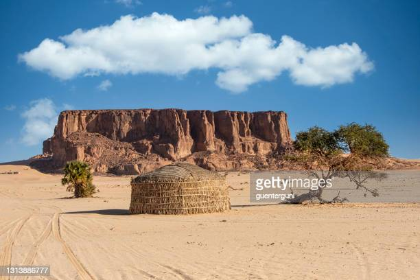 hut of nomadic tubu people in the sahara, northern chad - smurfs: the lost village stock pictures, royalty-free photos & images