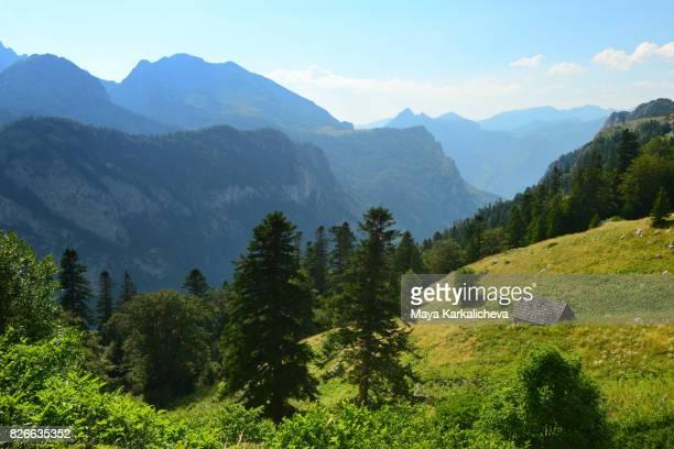 hut surrounded by an alpine meadow in maglic mountain - bosnien und herzegowina stock-fotos und bilder