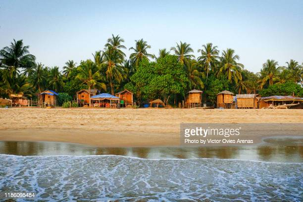 huts and coconut palms on galgibaga/turtle beach, colva, goa, india - goa stock pictures, royalty-free photos & images