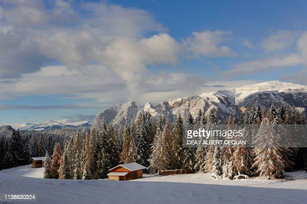 Huts and firs under the Rosengarten group and towards the Seiser Alm snowy landscape Eggental valley Dolomites TrentinoAlto Adige Italy