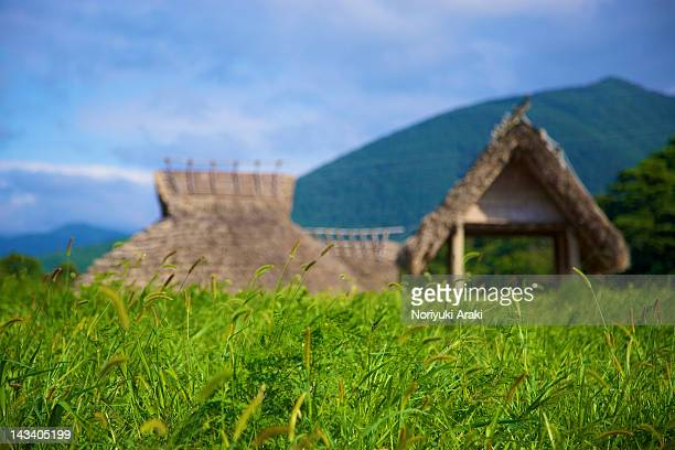 Huts in grass field in Japan